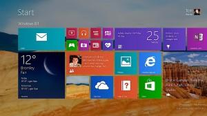 WINDOWS8-1-primer