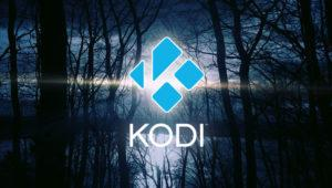 Aprende a configurar varios perfiles de usuario en Kodi 17