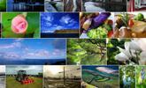 QuickViewer, el visor de imágenes y fotografías más rápido para Windows