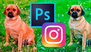 Cómo aplicar el filtro Clarendon de Instagram desde Photoshop
