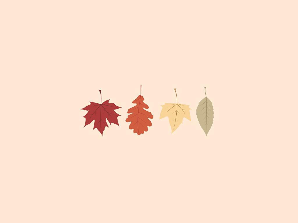 Fondos Otoño Wallpapers Autumn Fondos De Pantalla De Otoño