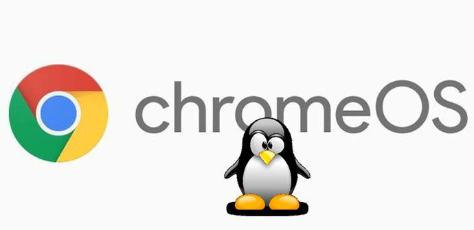 Chrome OS Linux