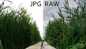 Webs gratis para convertir imágenes RAW a JPG o PNG
