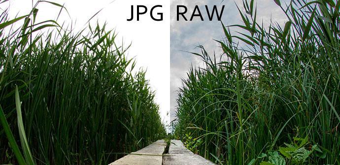 raw a jpg o png