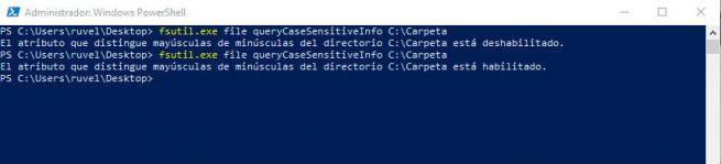 Diferencia mayuscula minuscula directorio windows 10