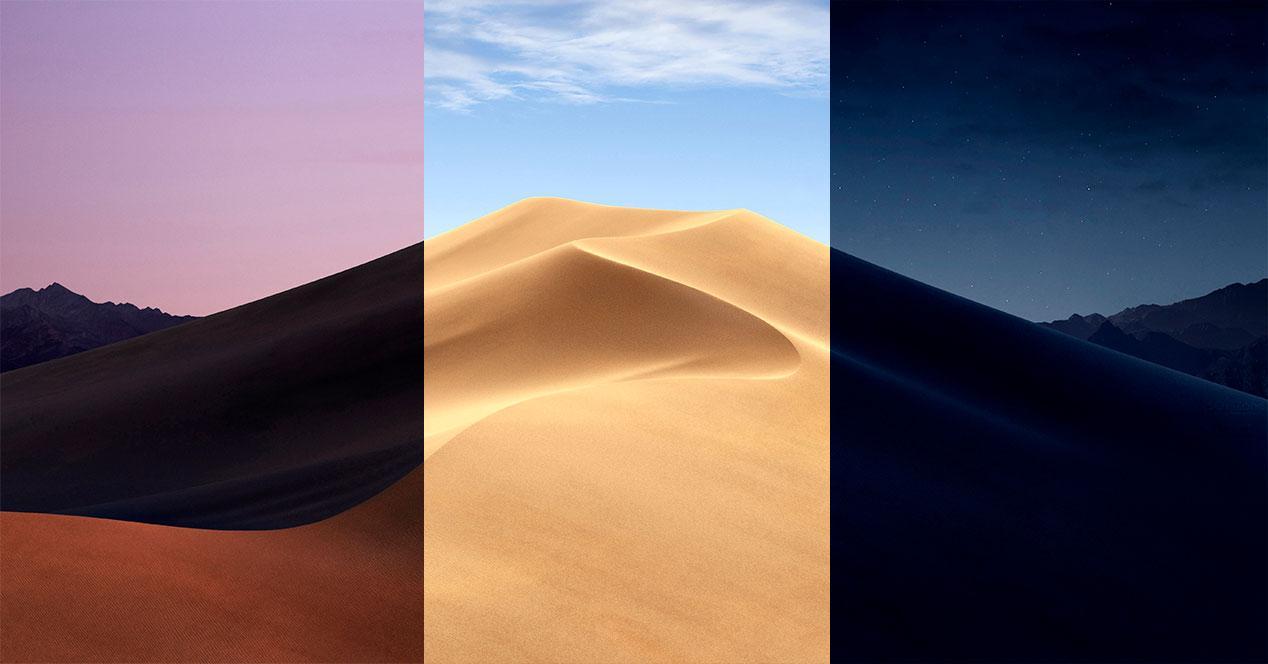 macOS Dynamic Desktop