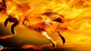 Mozilla quiere imitar a Google y hace que Firefox recomiende webs según nuestras búsquedas