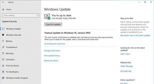 Opcional actualizar Windows 10 May 2019 Update
