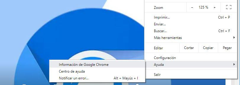 Información de Google Chrome