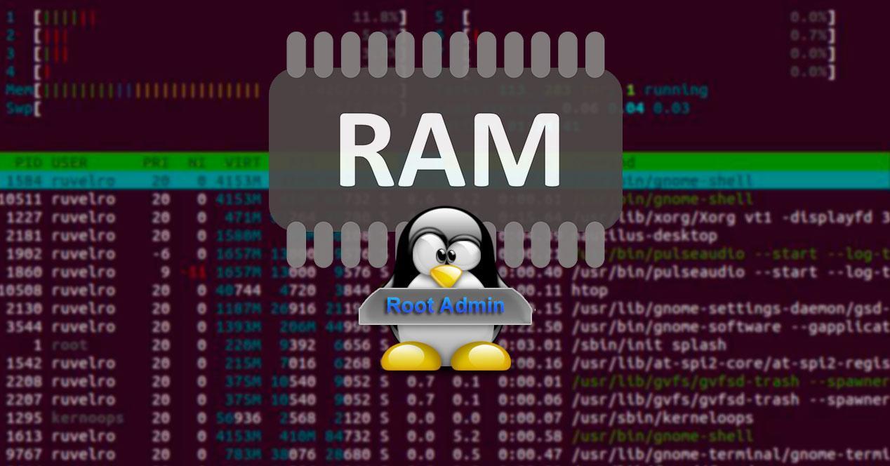 Gestionar RAM Linux