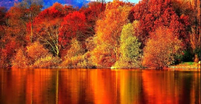 Paisaje lago otoño