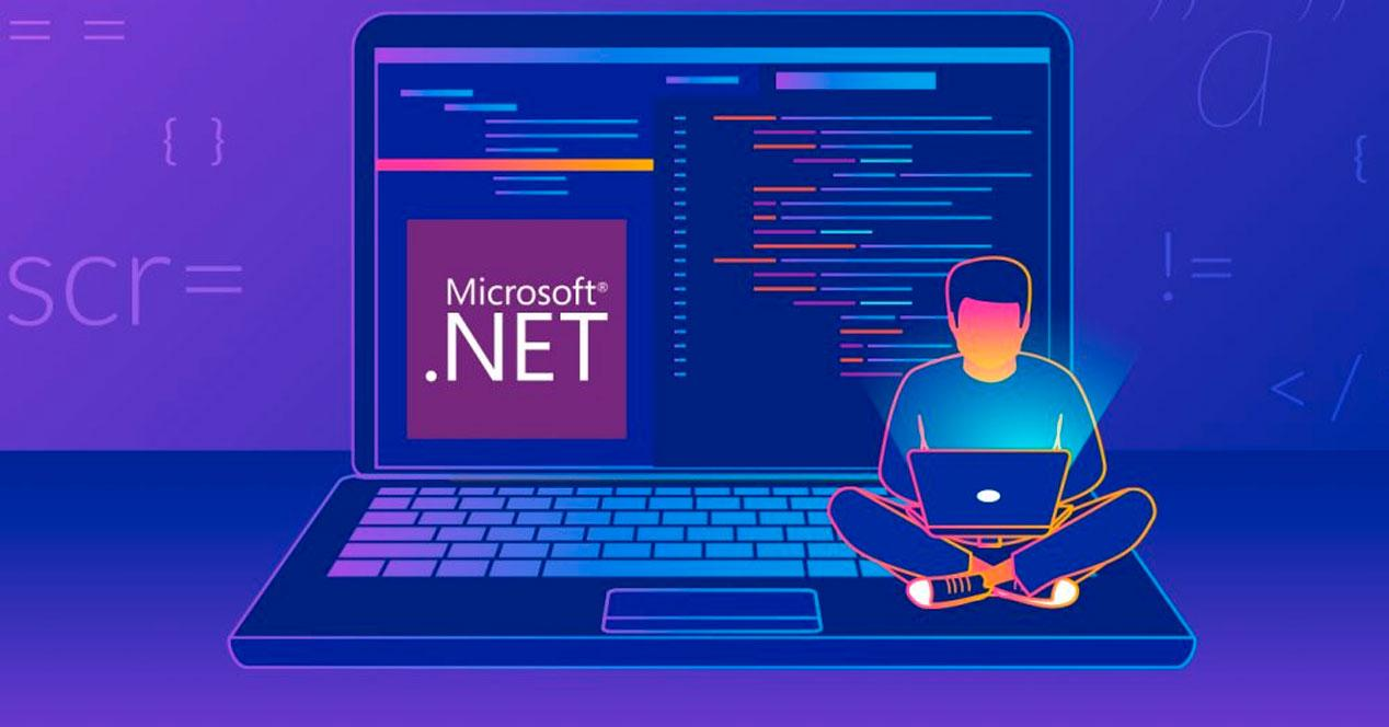 Microsoft NET Framework - programadores