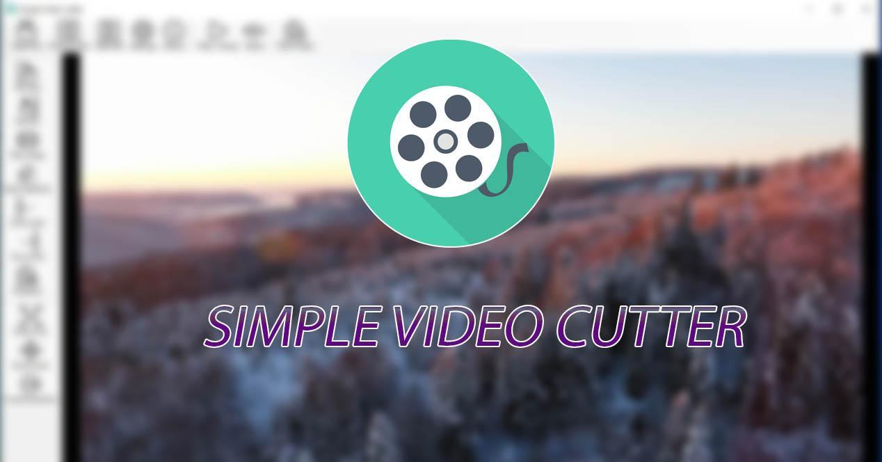 Simple Editor Cutter ID