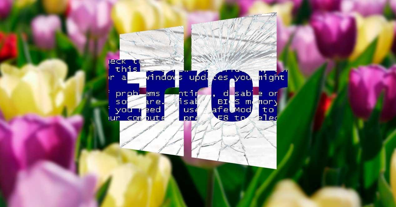 Error Windows primavera