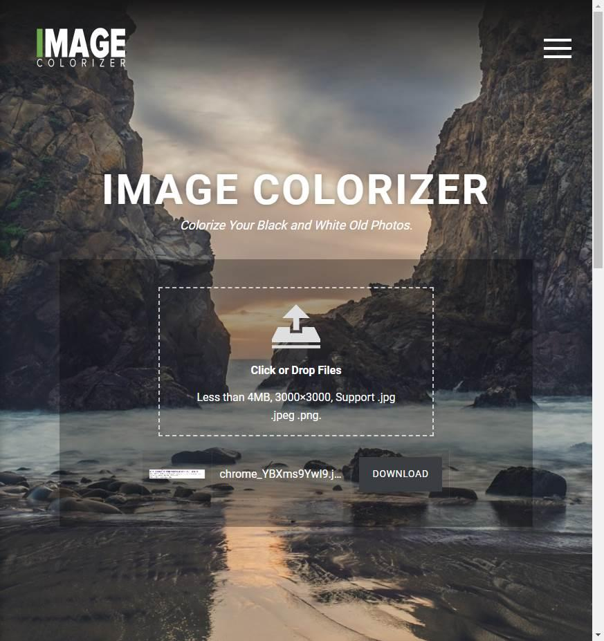Image Colorizer