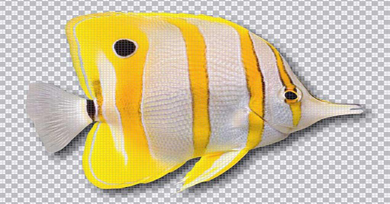 Pixelformer pez bitmap