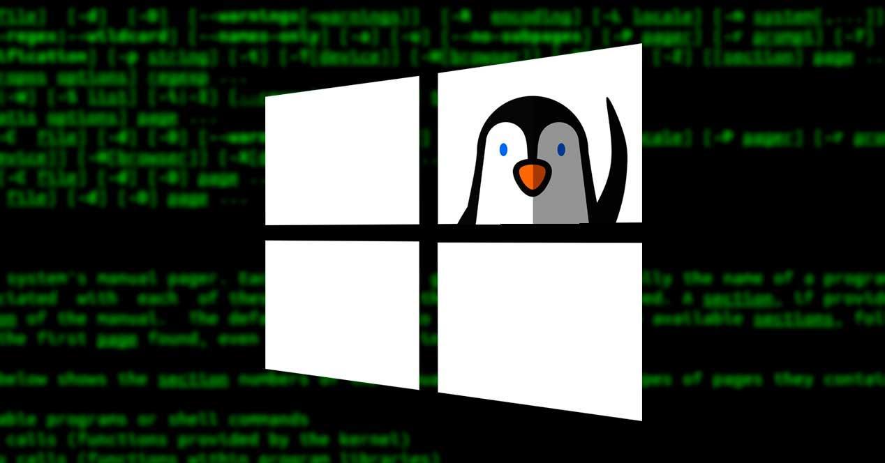 Windows WSL