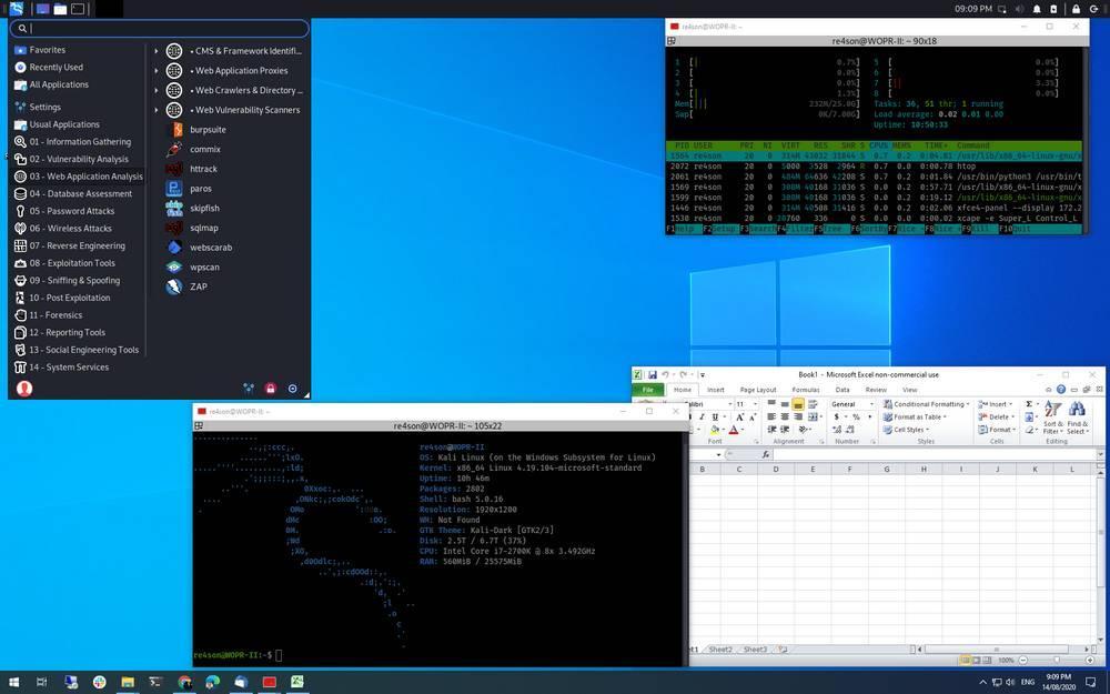 Kali Linux WSL2 transparent