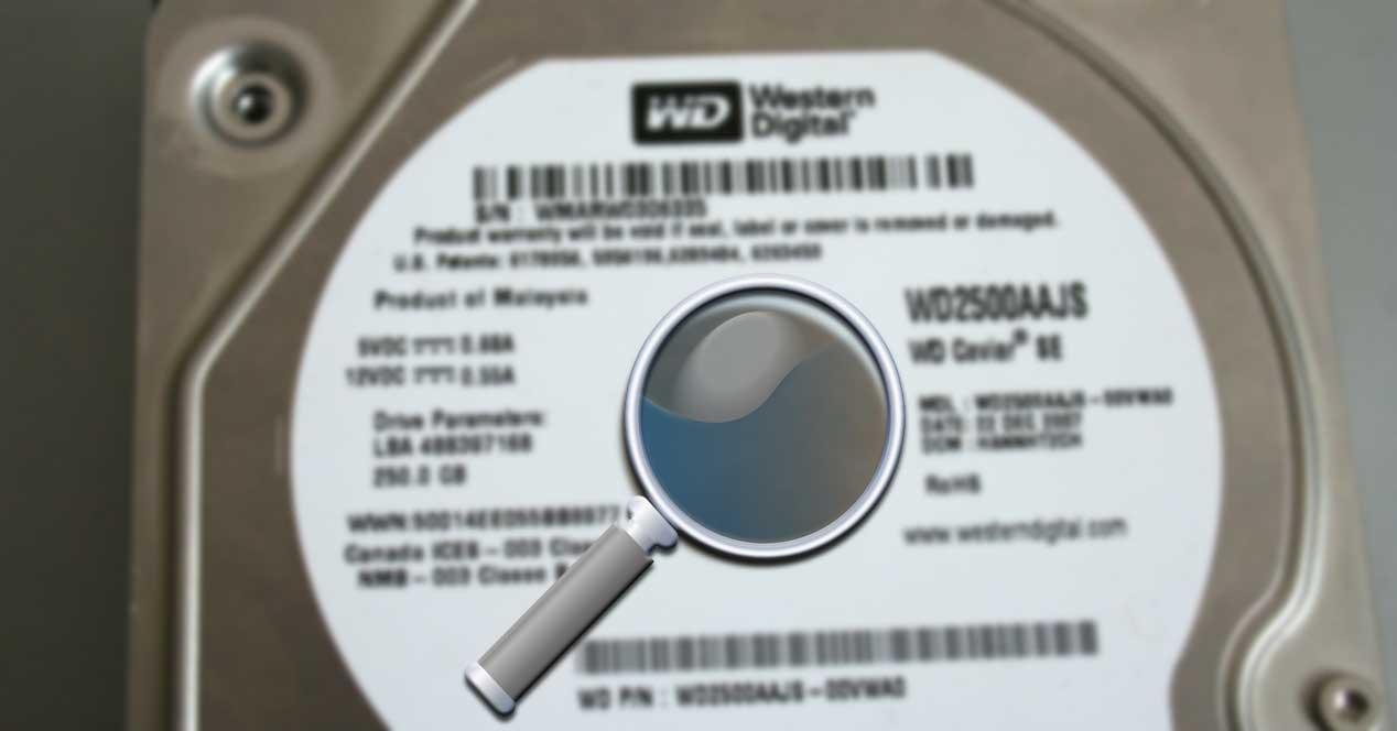 lupa discos duros