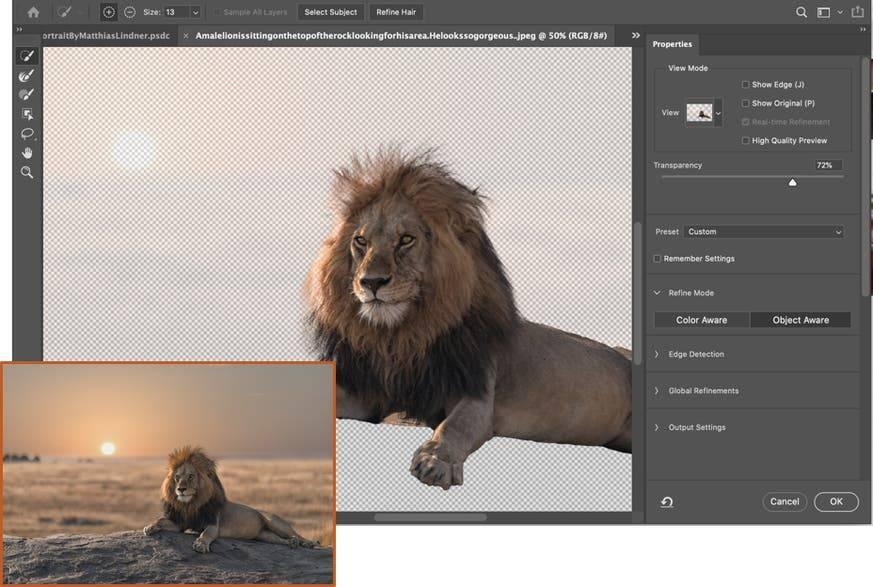 Adobe Photoshop 2021 - selección inteligente