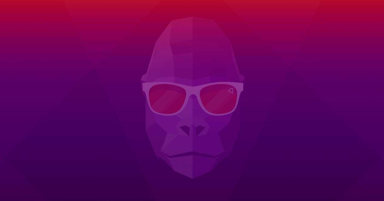 Ubuntu 20.10 Gorilla
