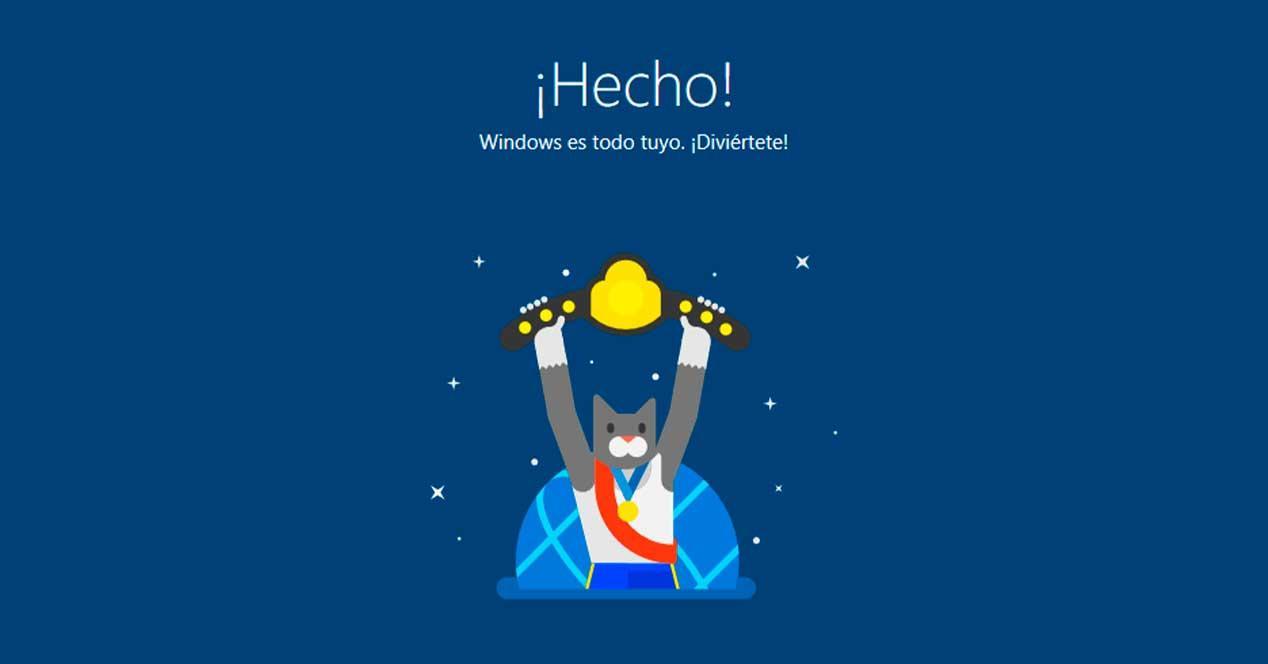 Windows 10 gato Insider éxito