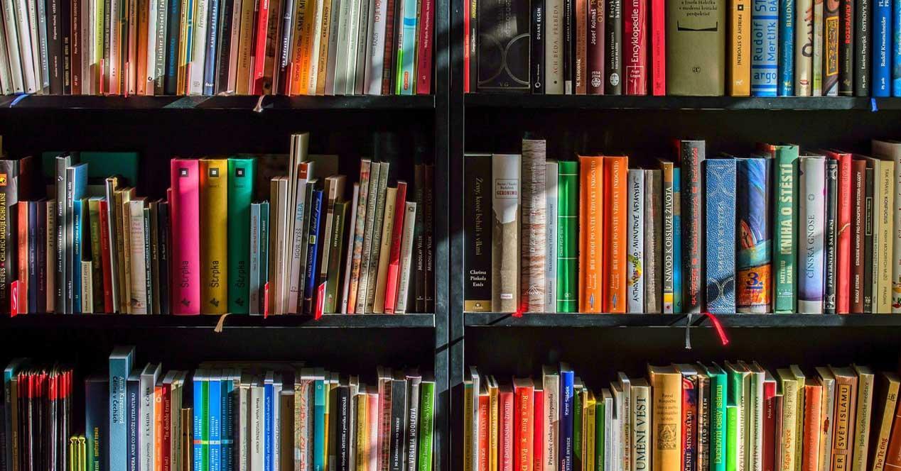 Libros estantería