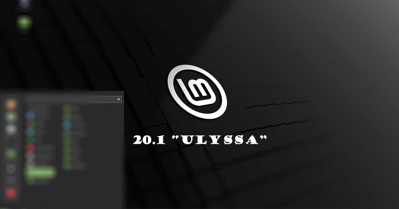 Mint 20.1 Ulyssa