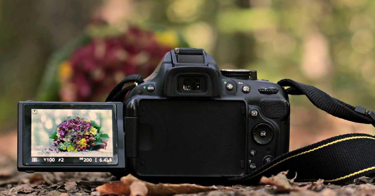 fotos cámara