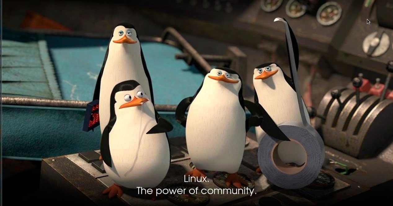 Linux comunidad