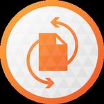 Paragon Partition Manager logo
