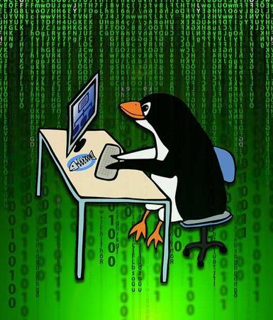 Programas linux