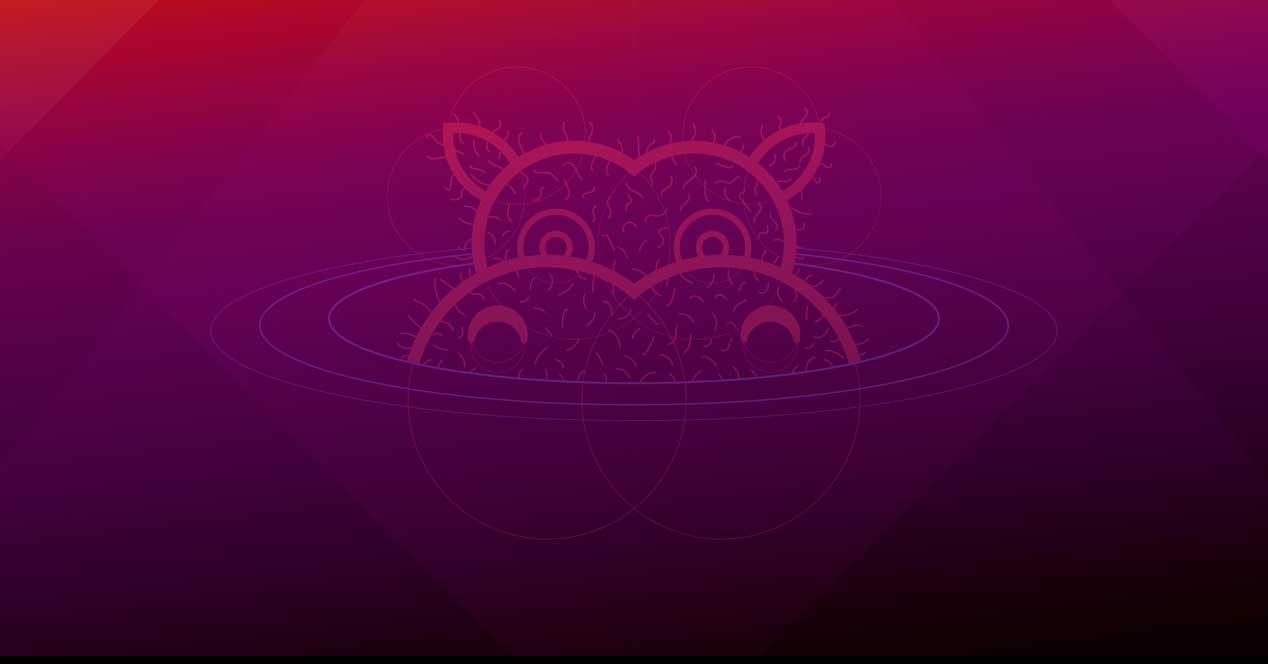 Ubuntu 21.04 Hirsute Hippo