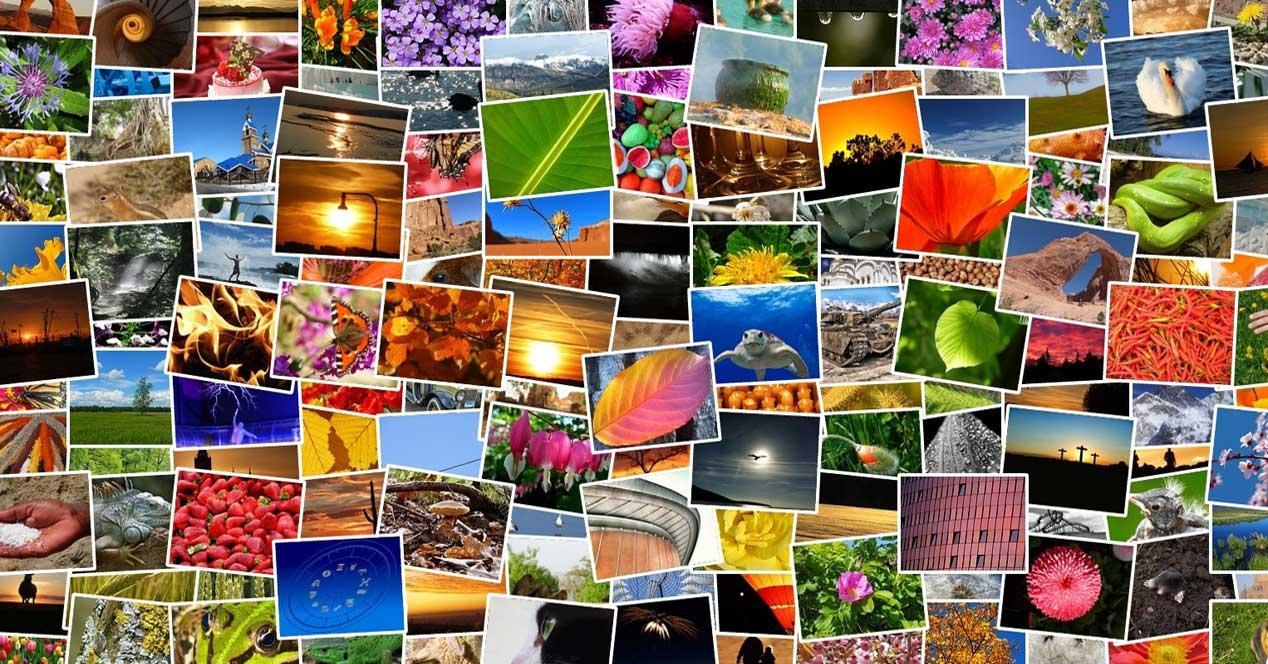 fotos paint net