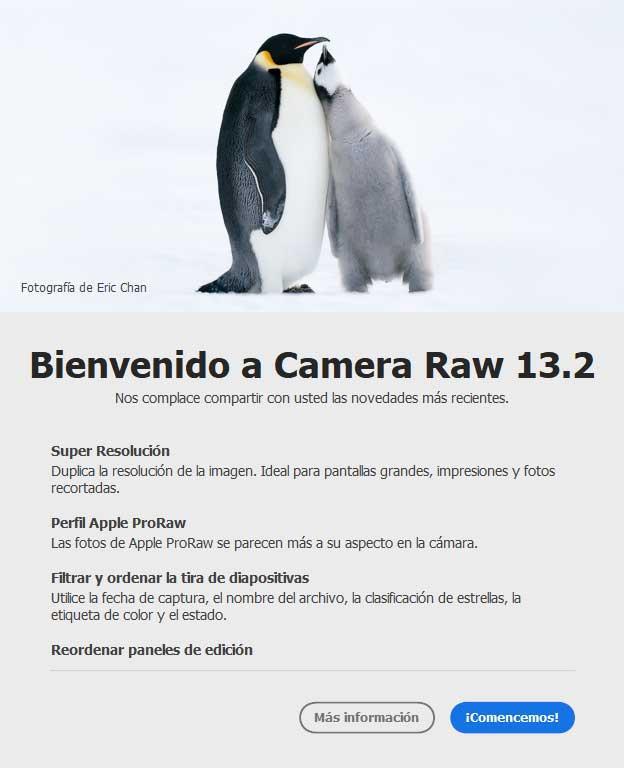 Camera-RAW