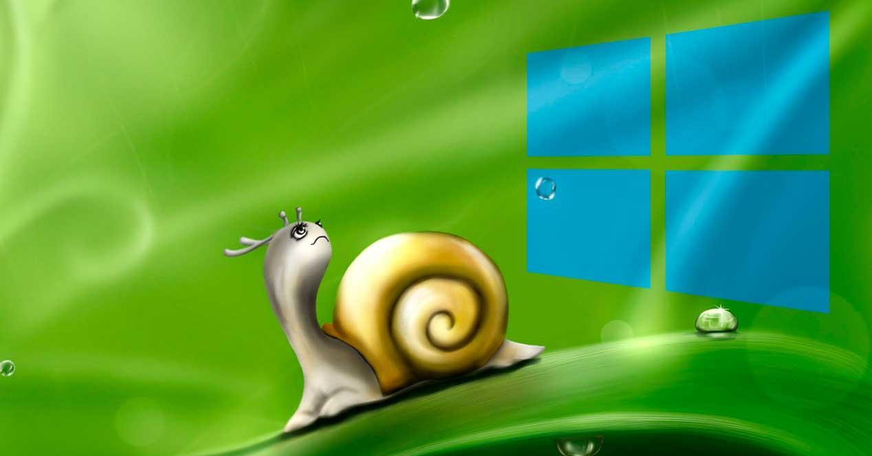 Caracol Windows 10