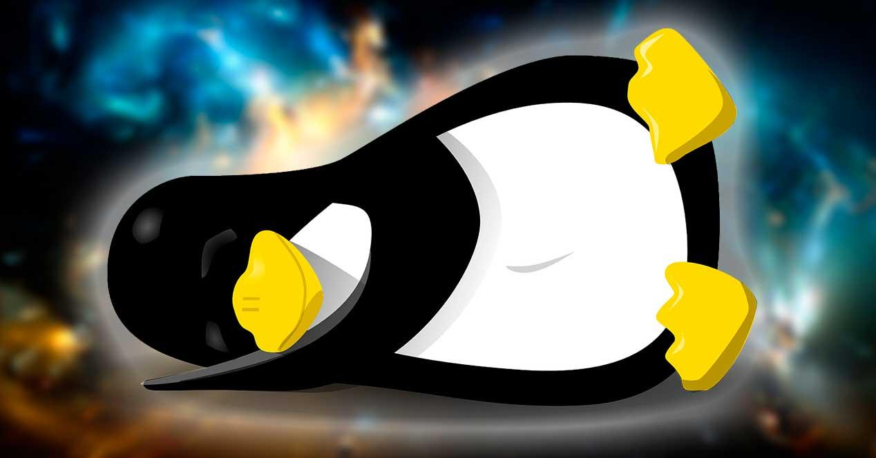 Linux zzz