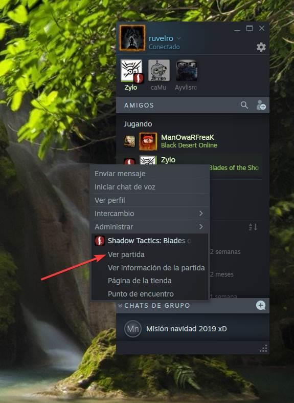 Steam - Activare desactivare streaming 6