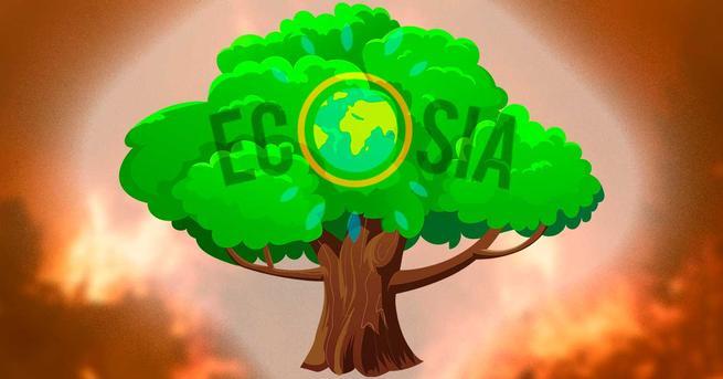 Ecosia Plantar árbol