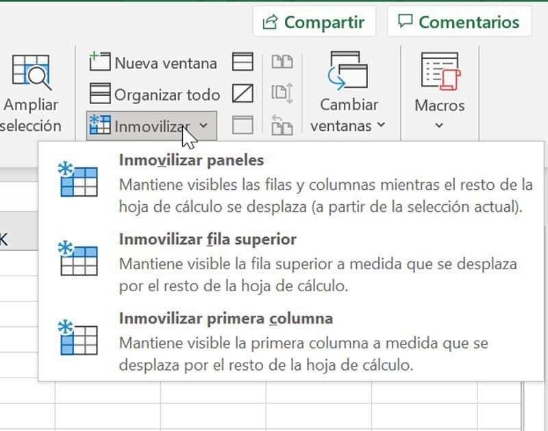 Excel inmovilizar paneles